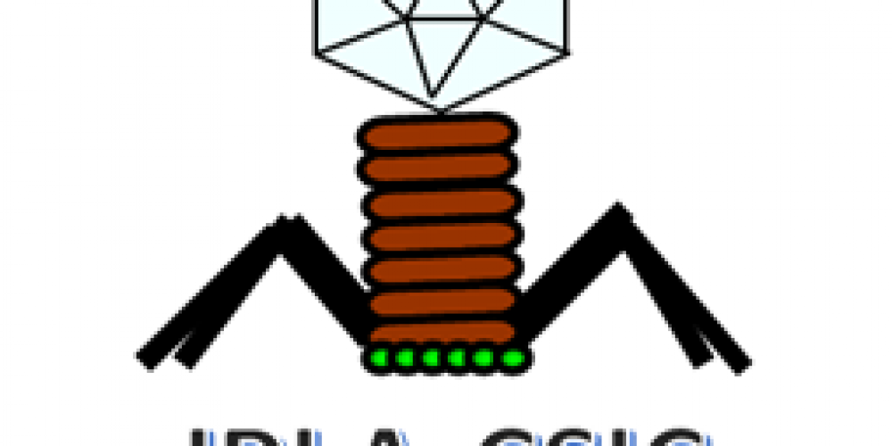 <strong>DAIRYSAFE PHAGES</strong>