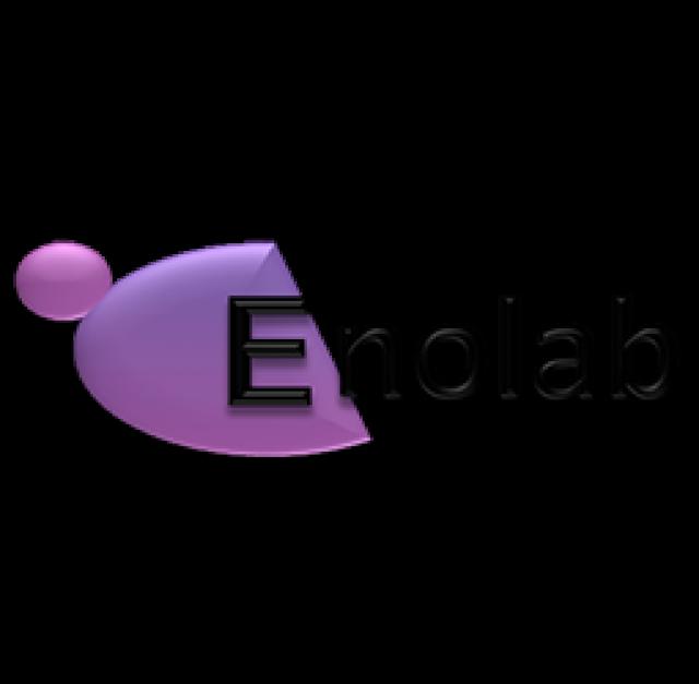<strong>CCM – ENOLAB</strong>