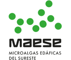 <strong>MAESE</strong>