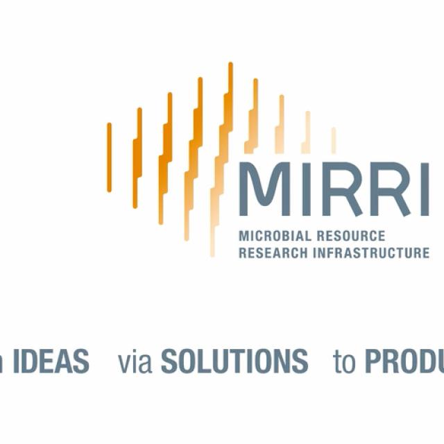 La Universitat de València acogerá MIRRI