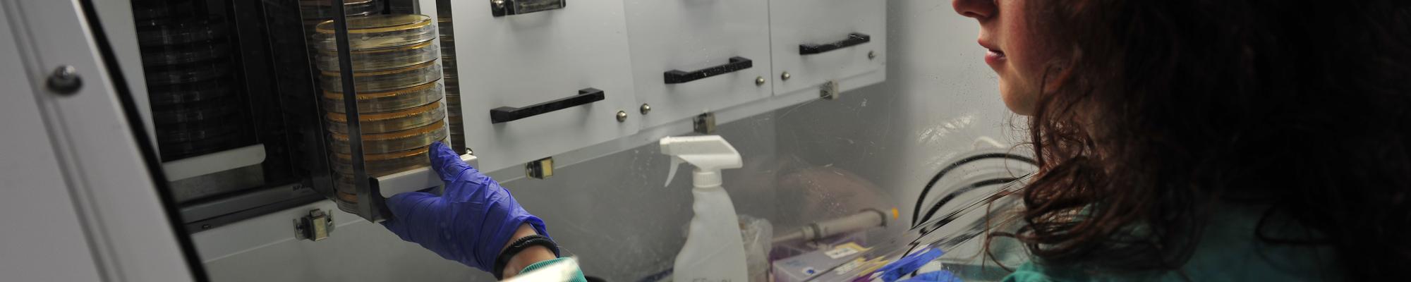 Científica BEA - MicroBioSpain