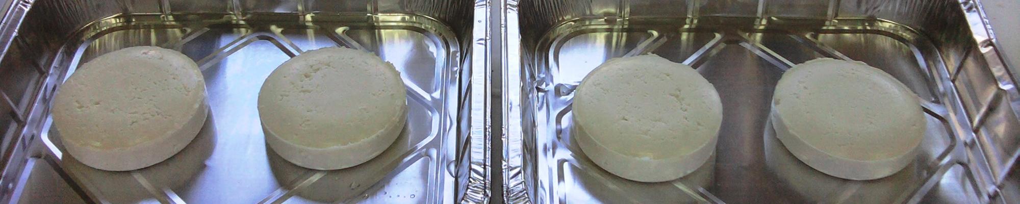 MicroBioSpain - Quesos INIA