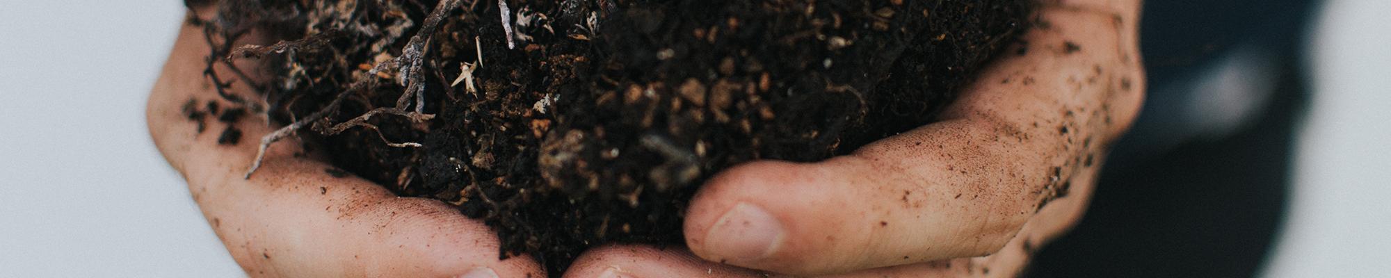 Manos cogiendo tierra - MicroBioSpain